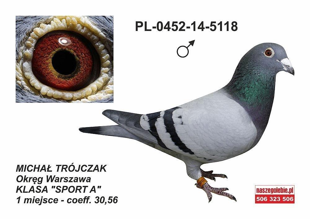67. Ogólnopolska Wystawa Gołębi Pocztowych Sosnowiec 2018